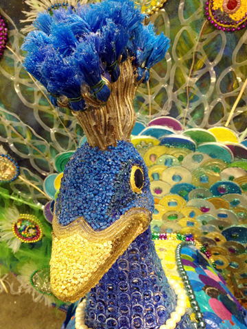 KDWB_Pear the Peacock upcolose.jpg
