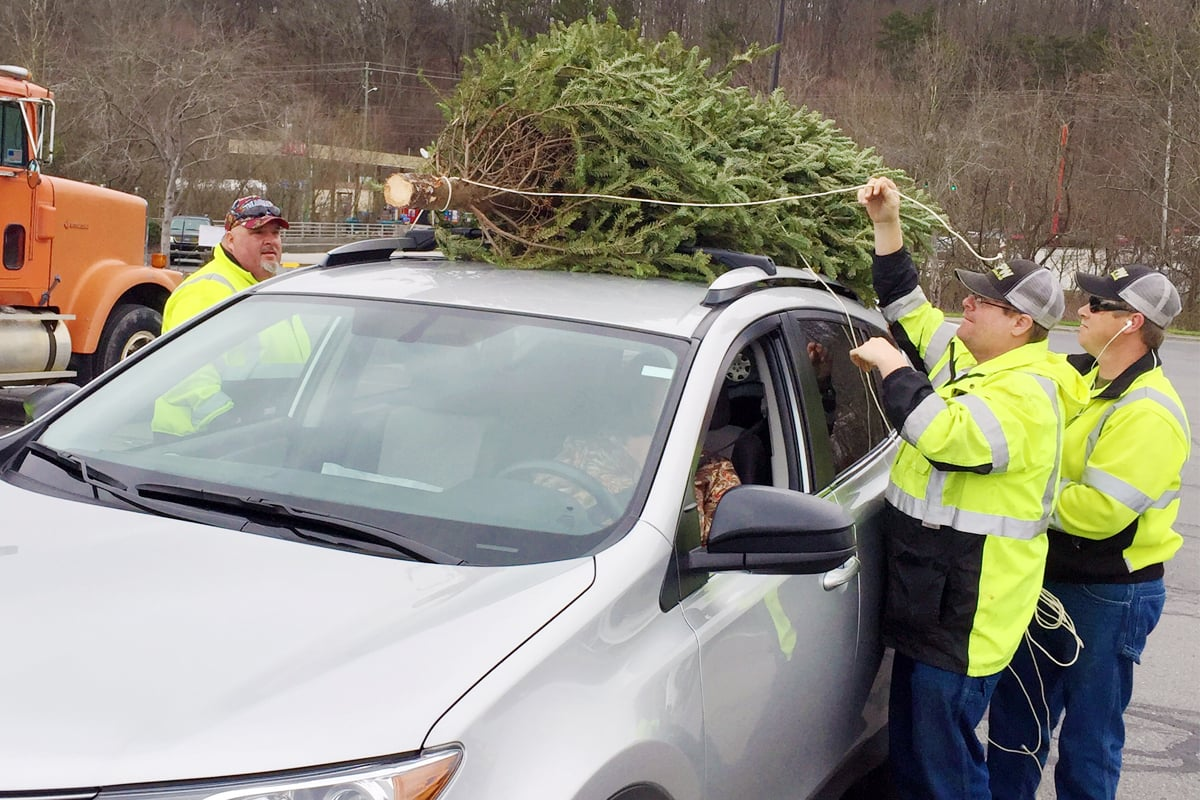Whitfield County Public Works staff unload a live Christmas tree that was dropped off for recycling last Saturday at The Home Depot. Trees were recycled on site into mulch that will be used to beautify the county.