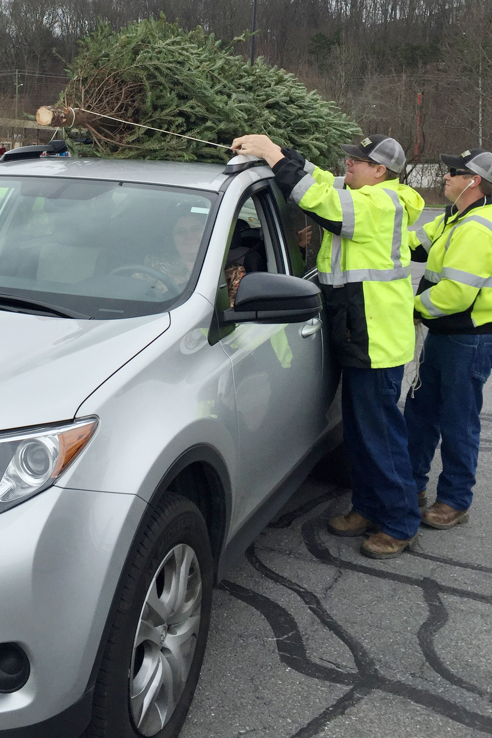 """Whitfield County Public Works staff unload a live Christmas tree during Keep Dalton-Whitfield Beautiful's annual """"treecycling"""" event. The next event will be on Saturday, January 7 from 8 am to 12 pm."""