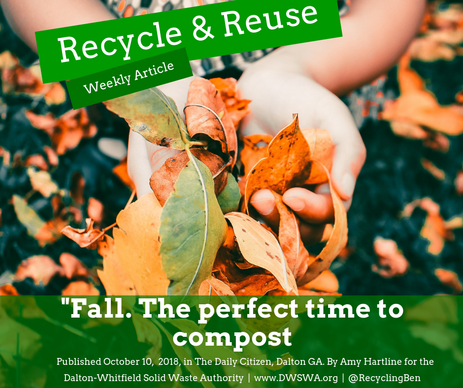 Leaves make the perfect addition to your compost bin and make fall one of the best times to try out composting for the first time