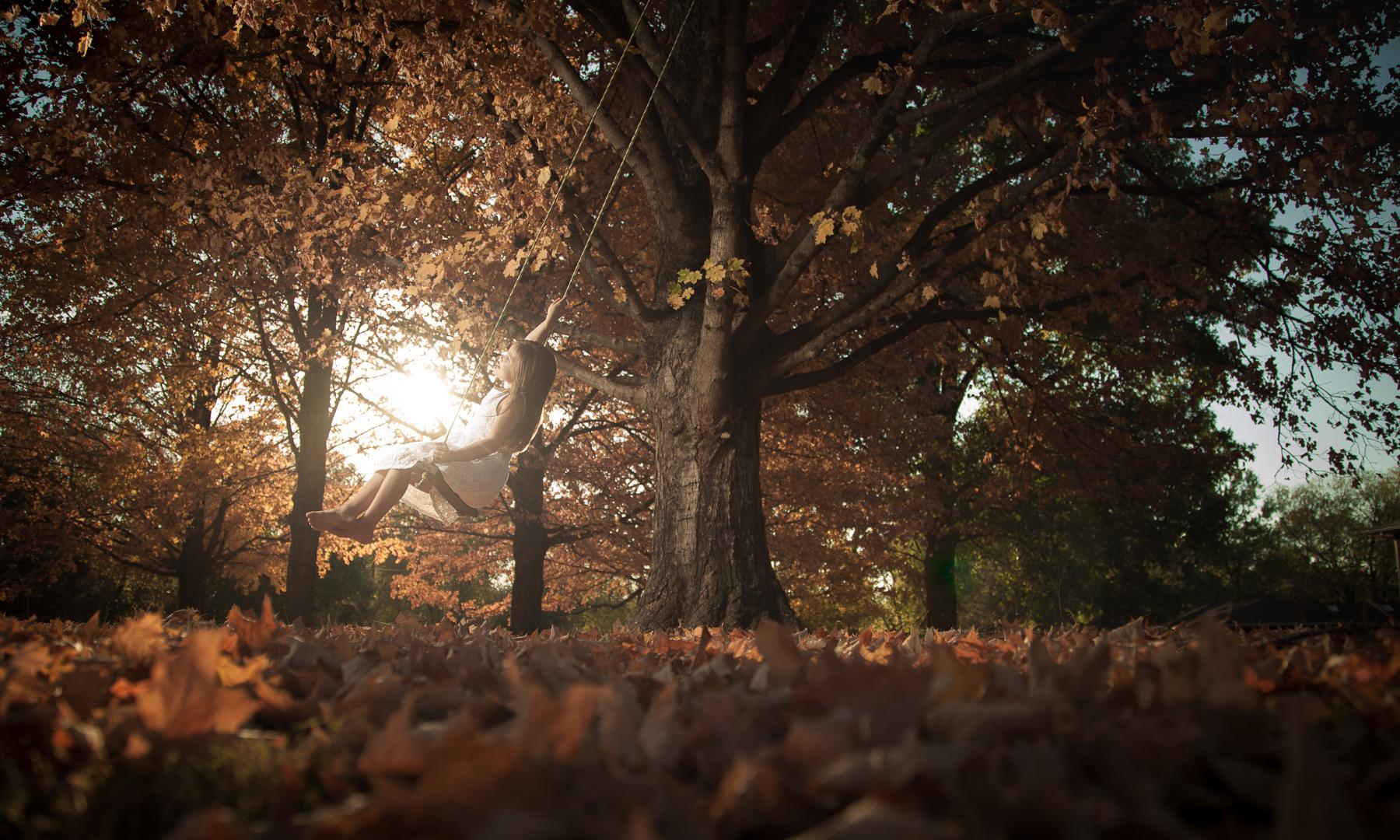Autumn Swing Wide.jpg