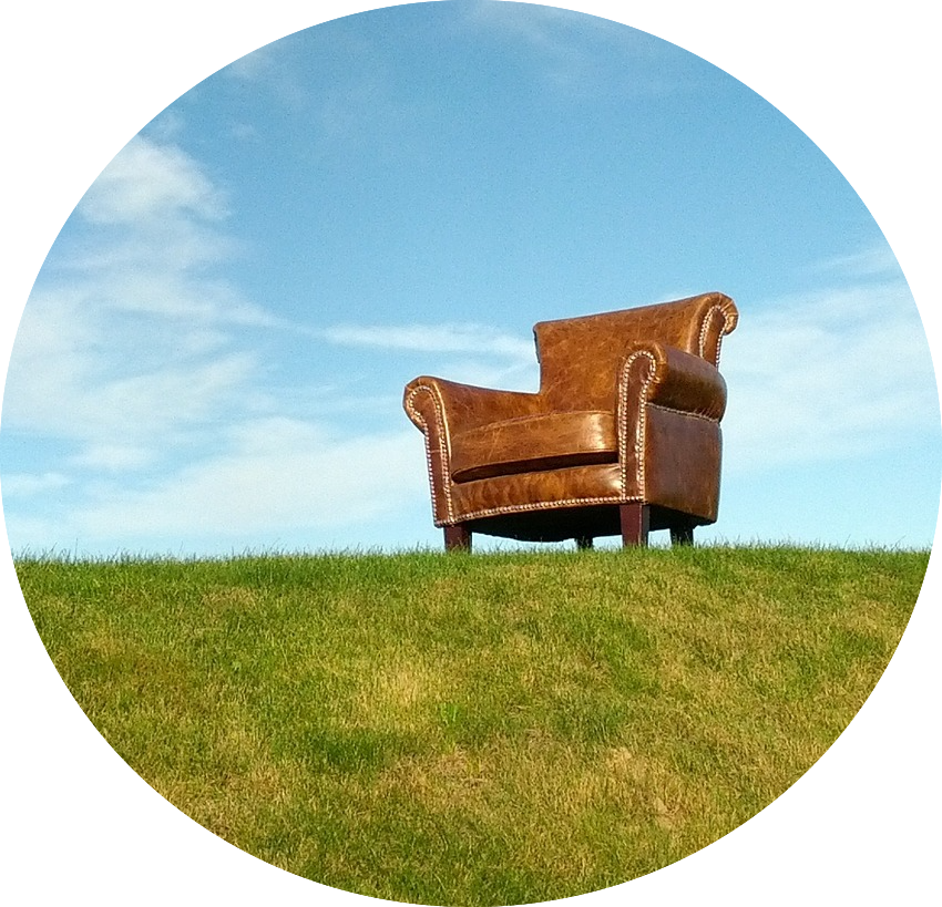The Adult Chair.png