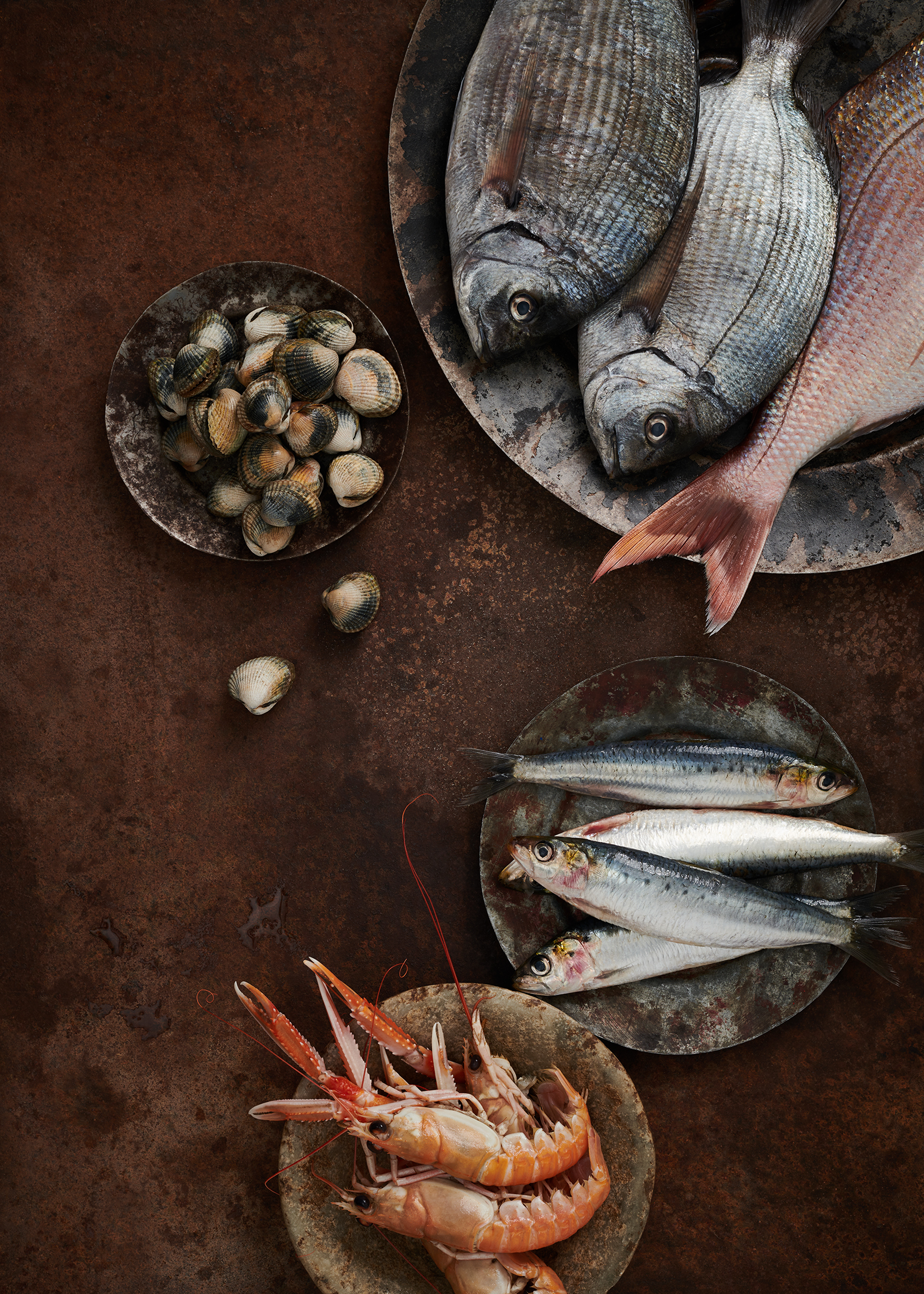 black bream cockles and sardines by Holly Pickering