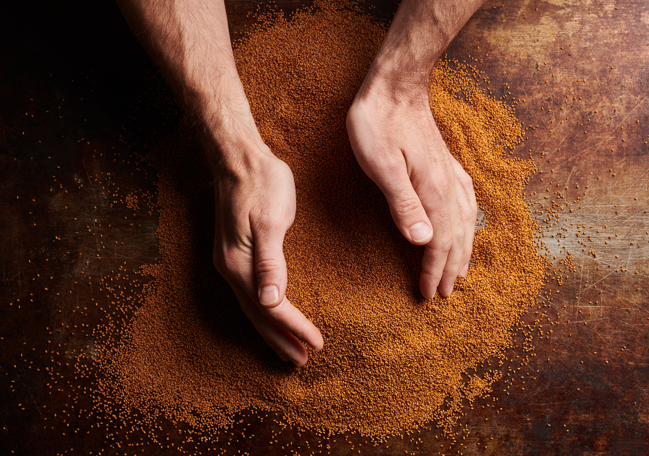 A man scooping grain with his hands