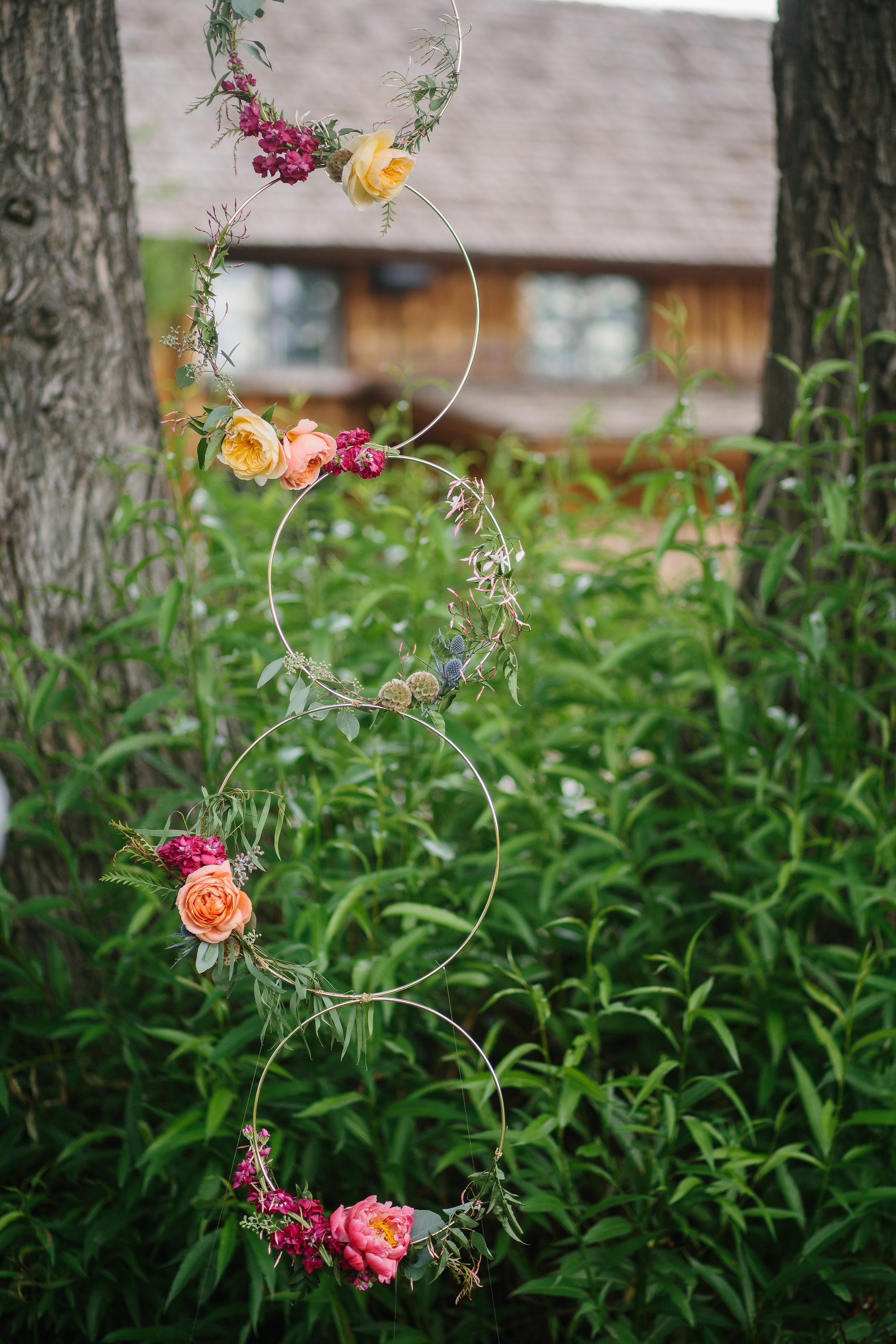Flowers by Lace and Lilies - ceremony floral hoops, gold, yellow, peach, pink, greenery, modern, bright, vibrant, altar, ceremony, flowers, gold rings, colorado, summer wedding, spruce mountain ranch, outdoor