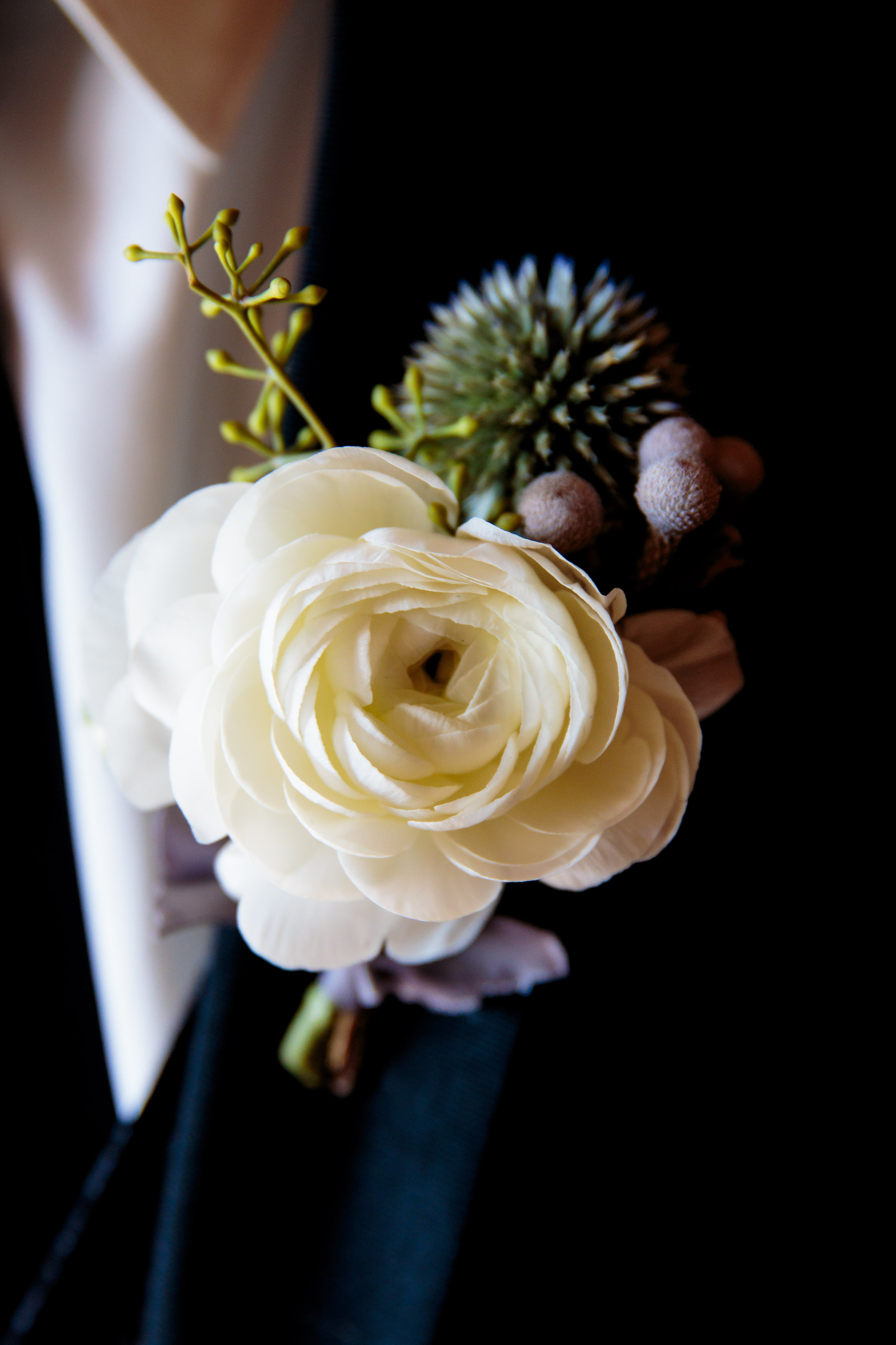 Flowers by Lace and Lilies, white ranunculus and blue thistle boutonniere, mountain wedding form tux for groom