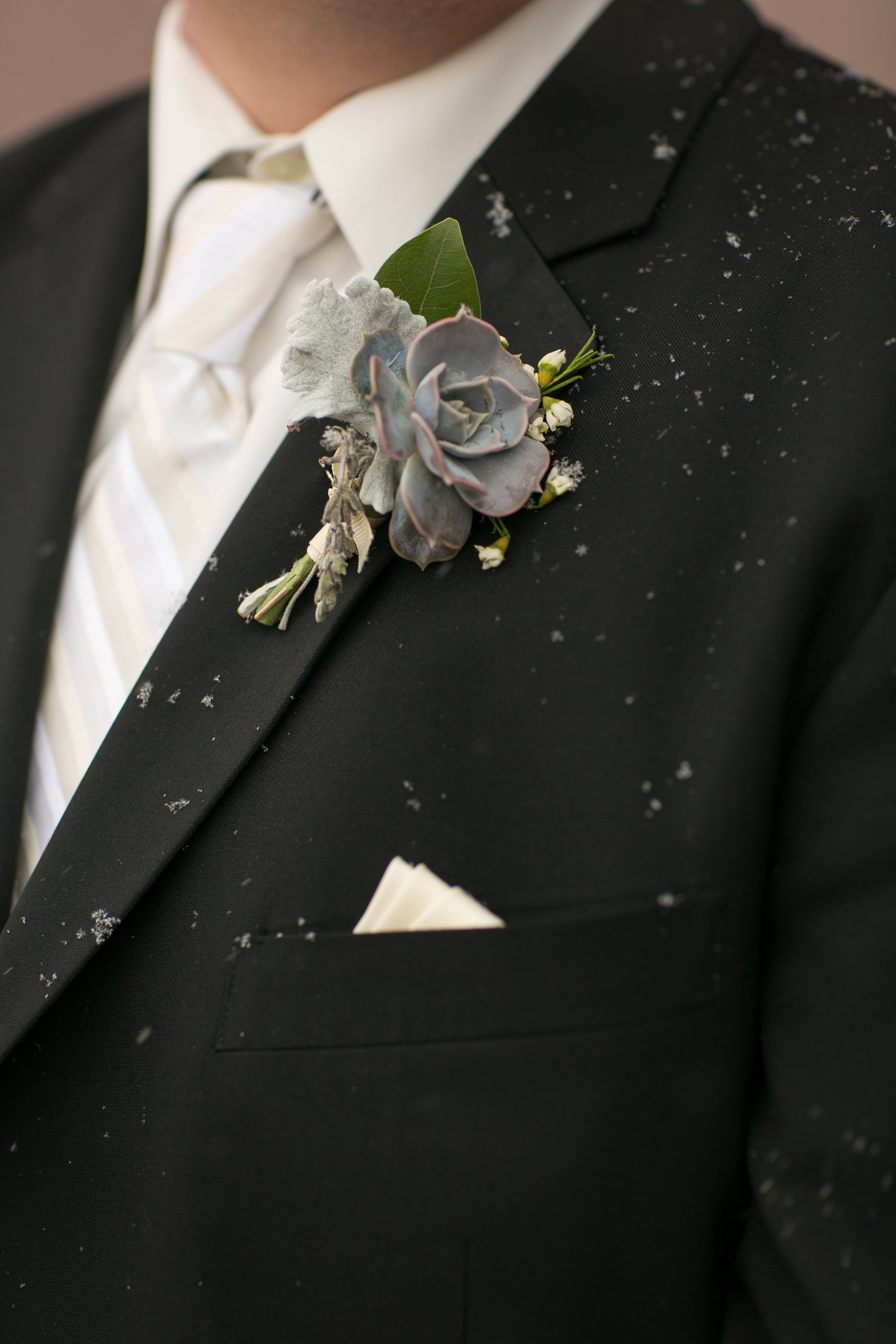 Flowers by Lace and Lilies, succulent and dusty miller boutonniere, mens wedding black suit and tie. Winter wedding