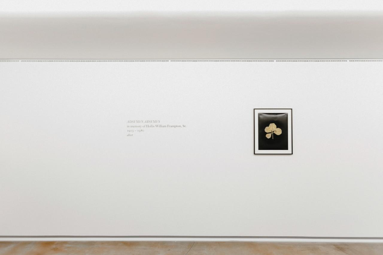 Hollis Frampton | Folkwang