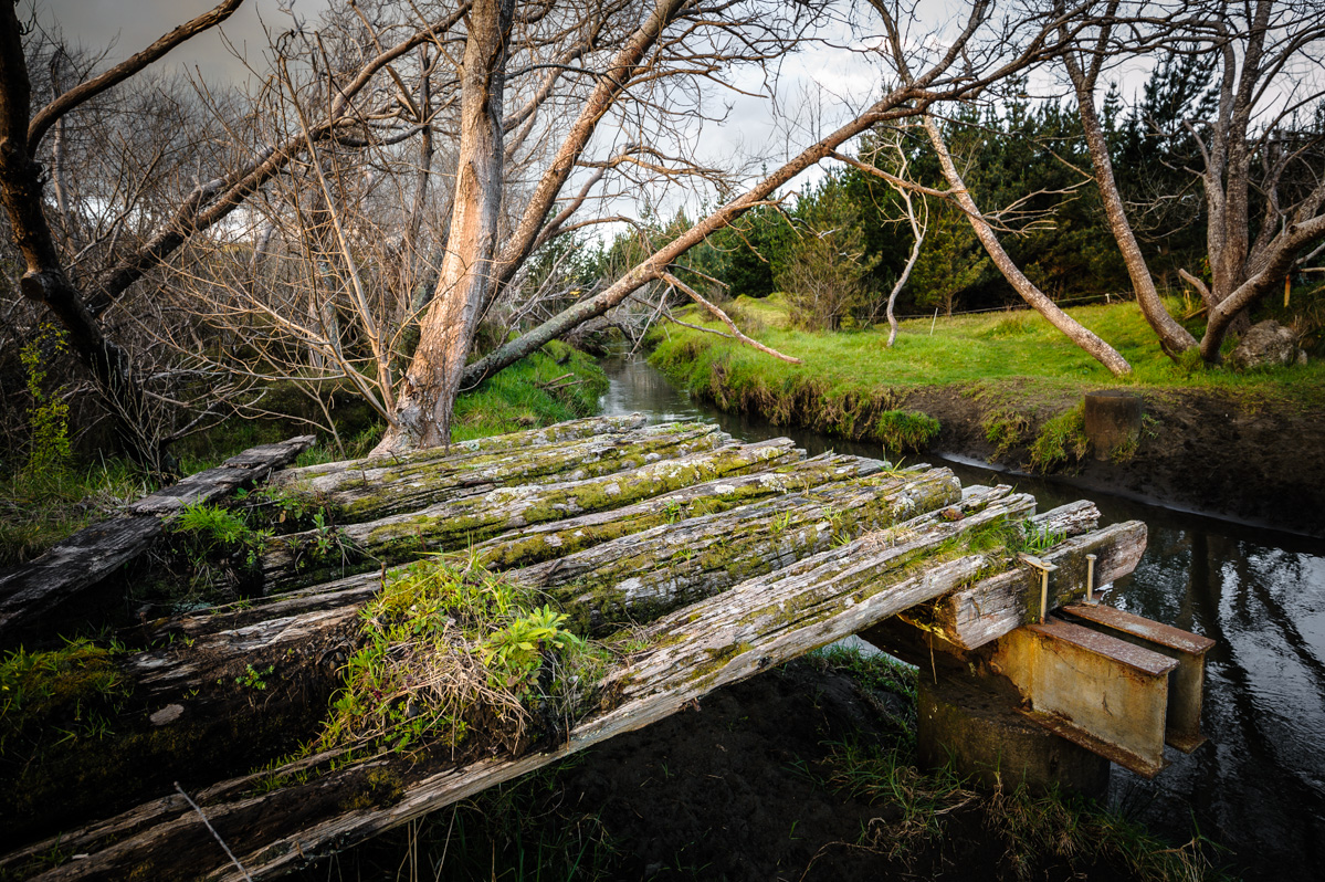 River at the edge of Woodhill Forest and a dodgy looking wooden platform