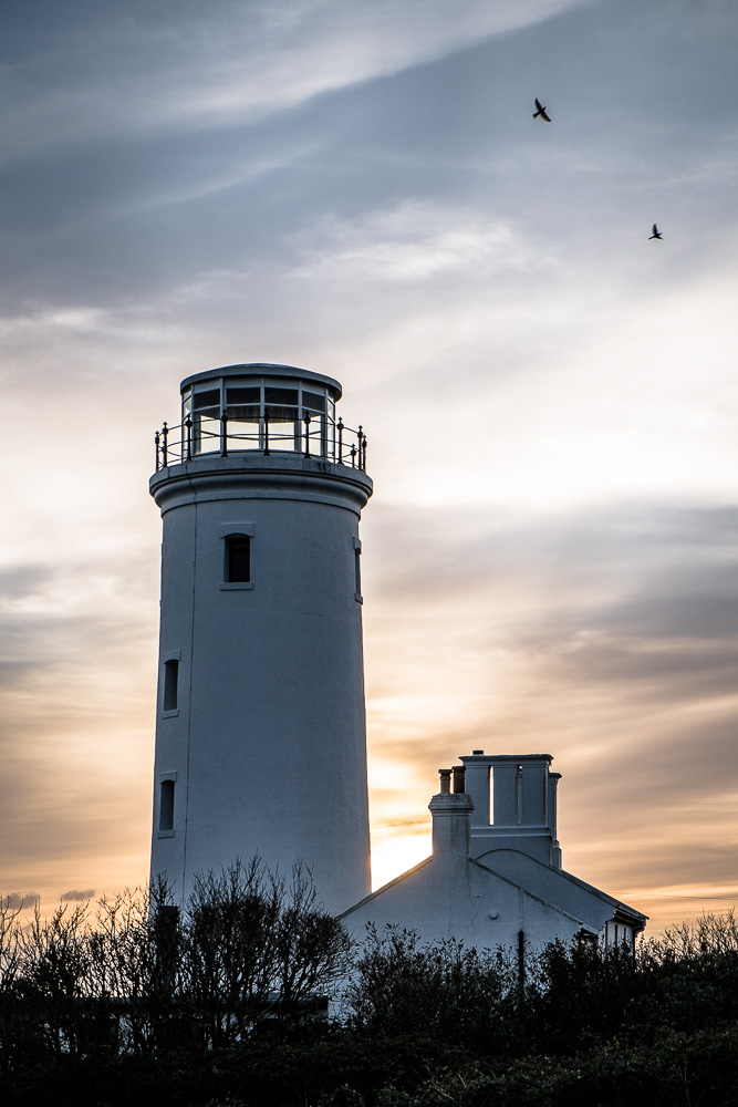 Portland Bird Observatory Lighthouse