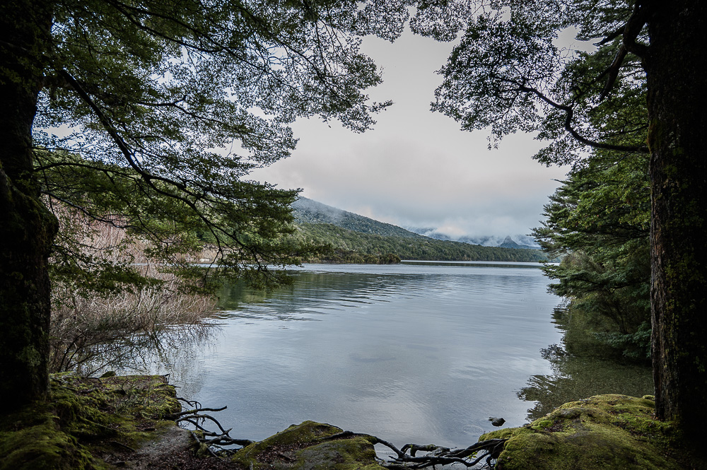Lake Manapouri frame