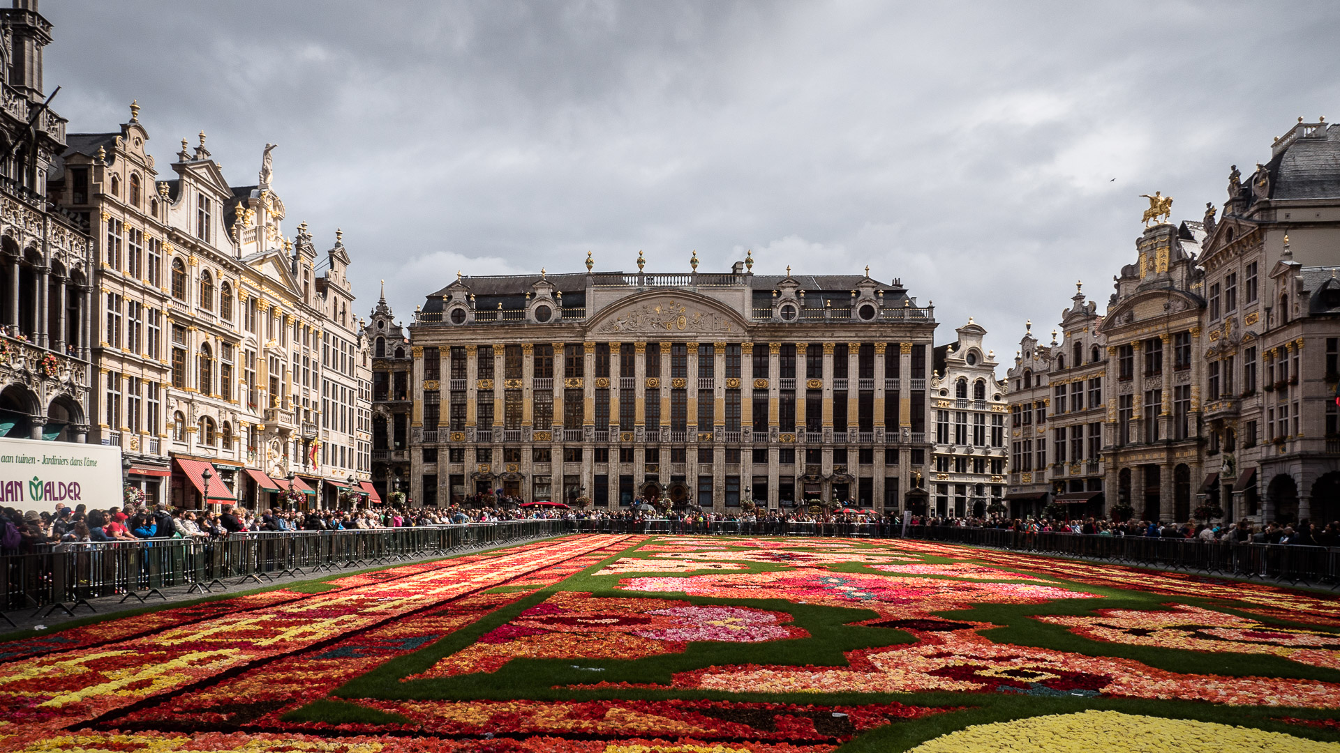 The Grand Place and the Flower Carpet
