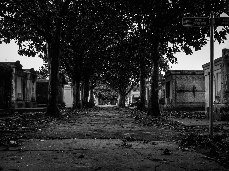 170401-New_Orleans-219-1080.jpg