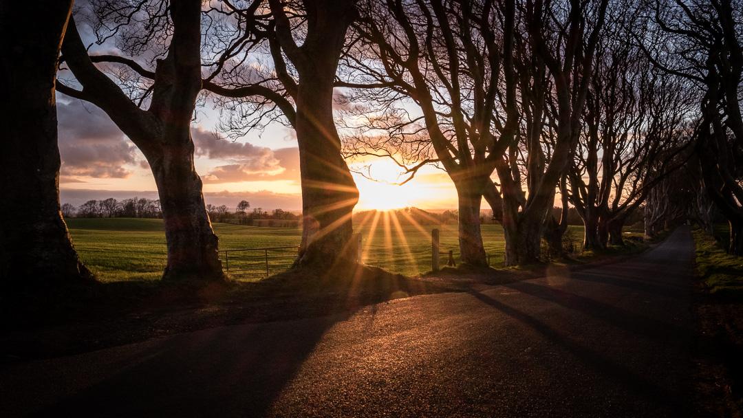160416-Ireland-Causeway_Coast-505-1080.jpg