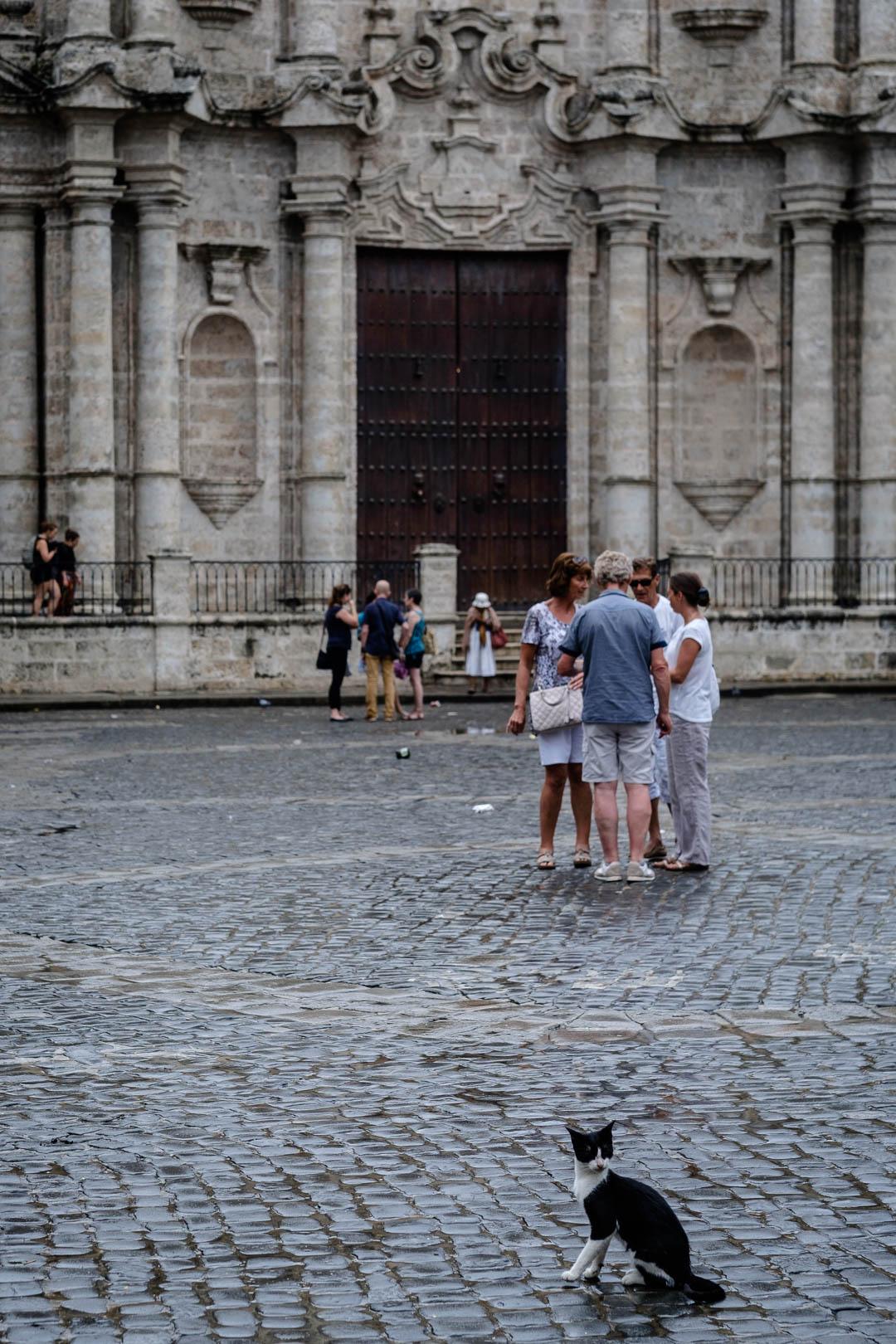 180426-Havana-179-1080.jpg
