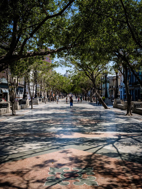 180501-Havana-289-1080.jpg