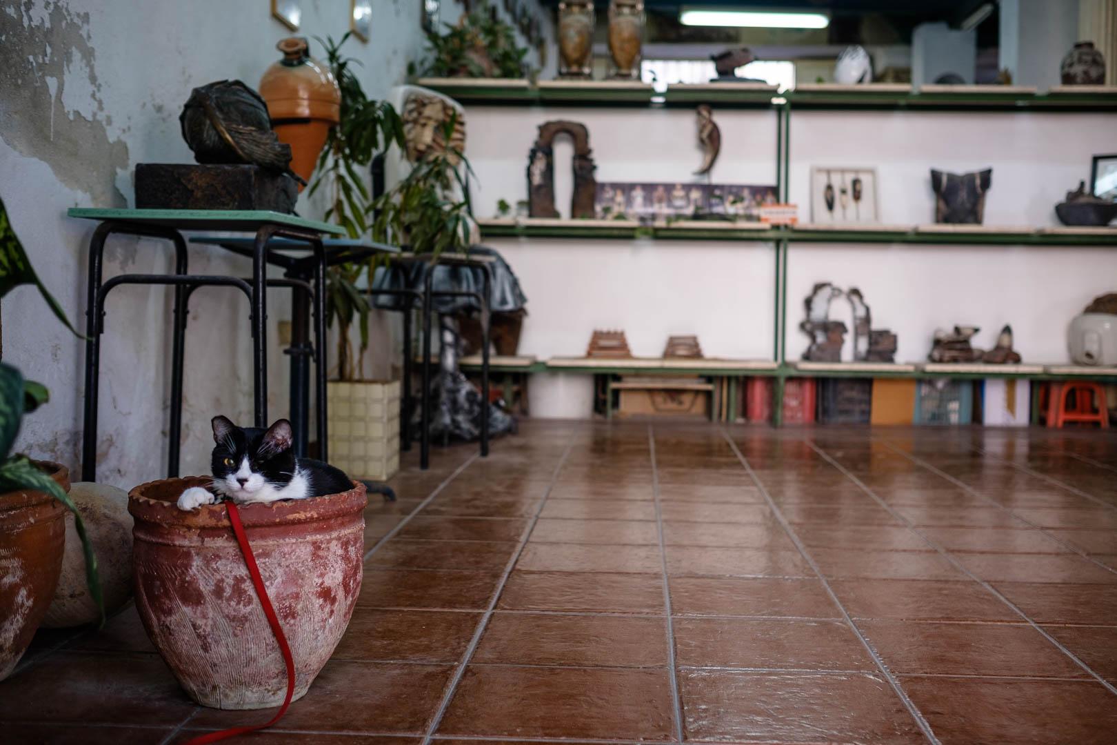 180501-Havana-326-1080.jpg