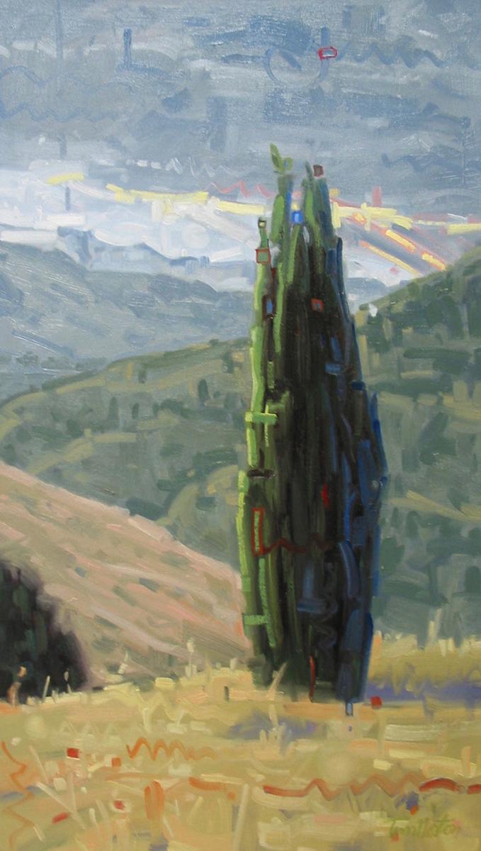 Juniper on the Hill