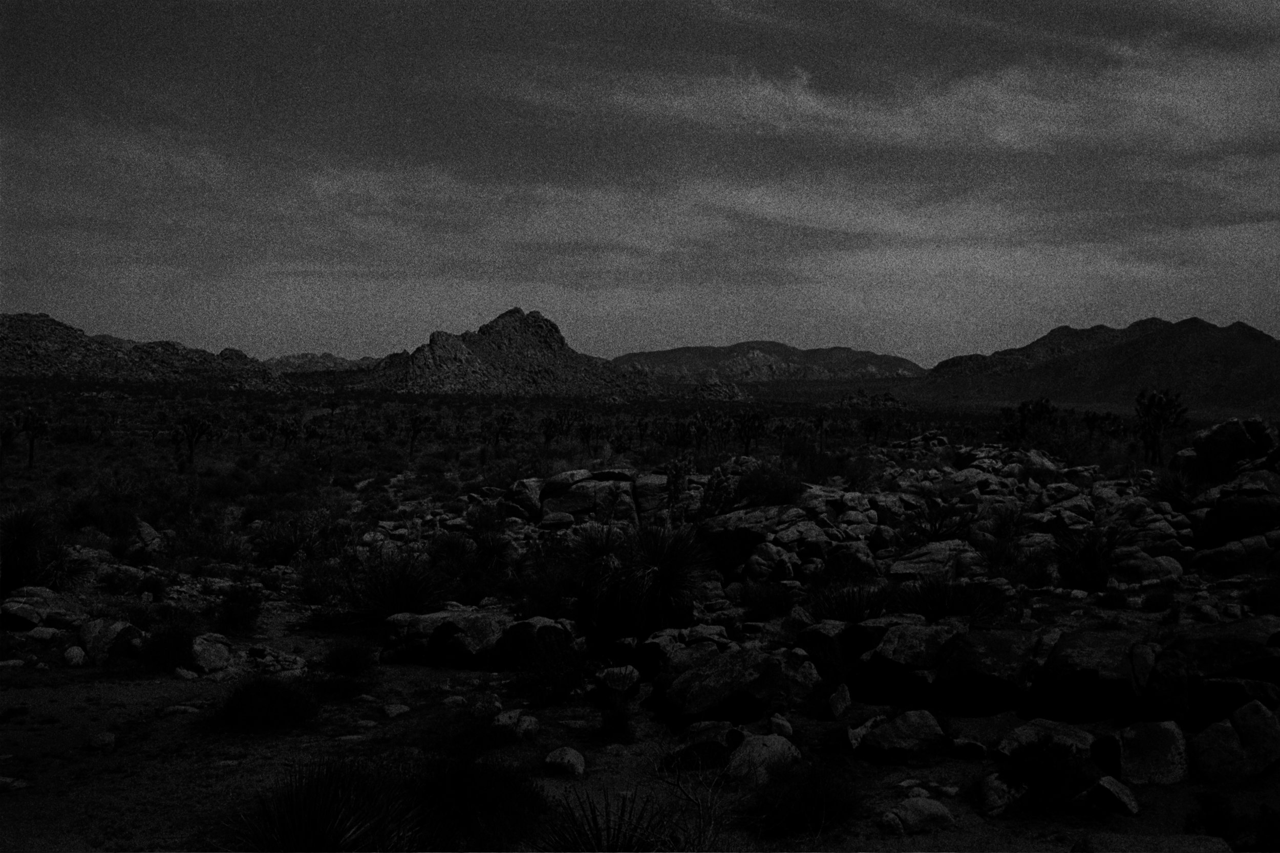 desert night.jpg