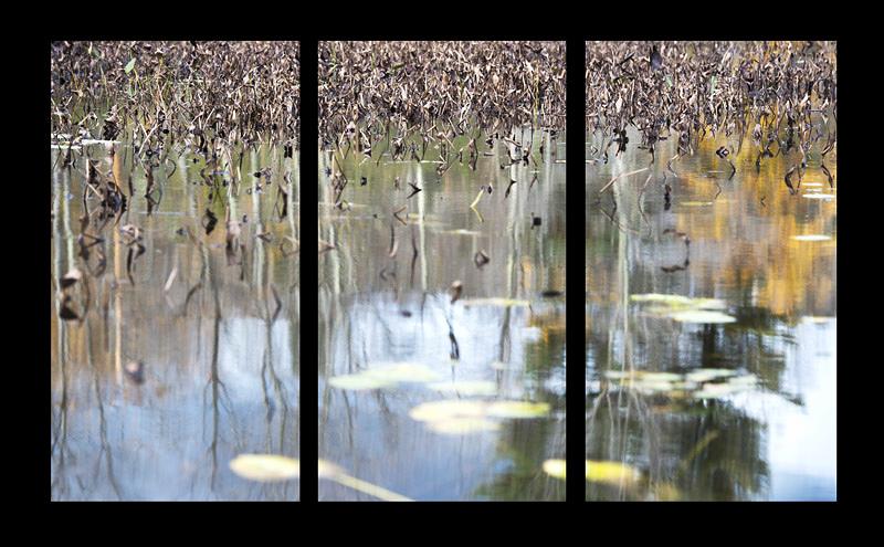 Pond 11 Triptych, 2013