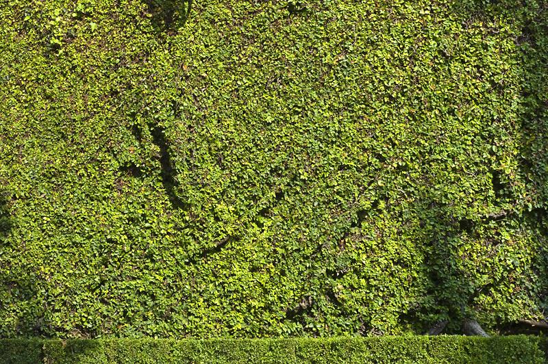Muri di Italia 15, 2013