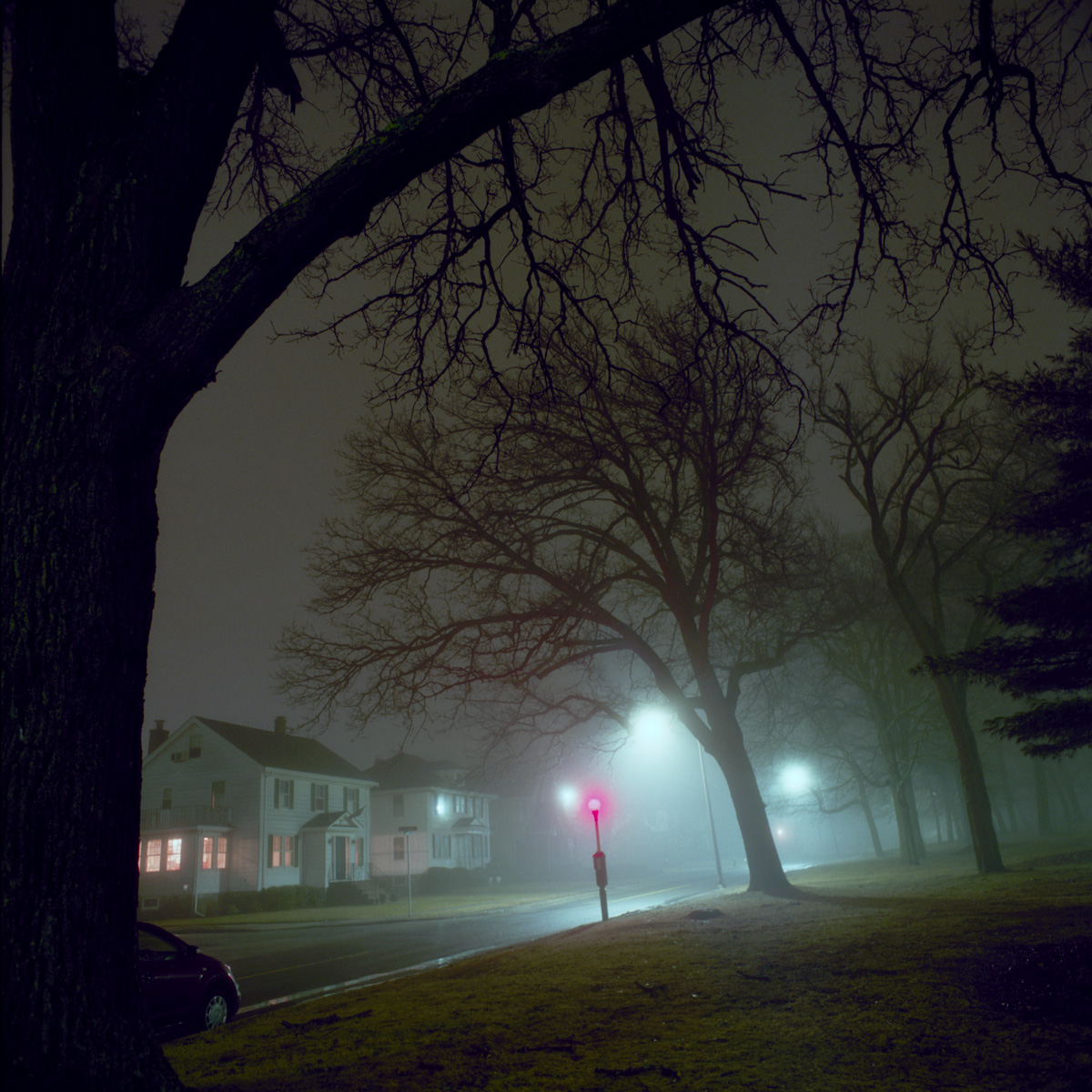 Night Wanderings