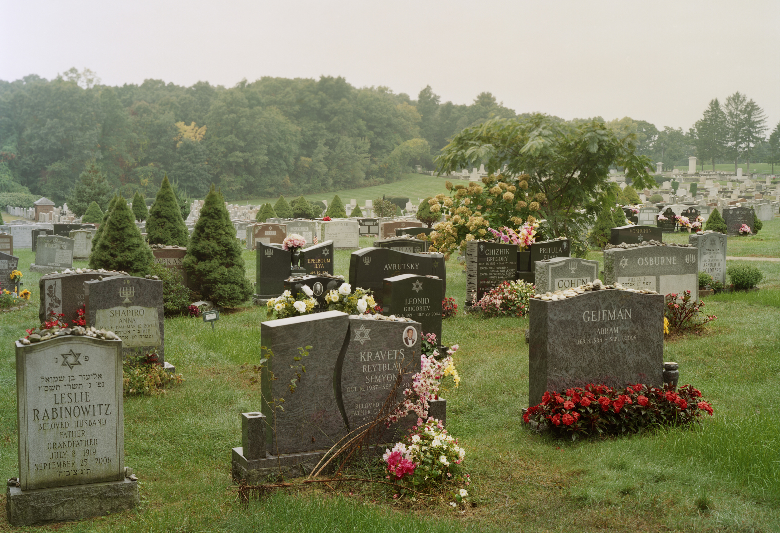 West Roxbury, 2013: Mount Lebanon Cemetery