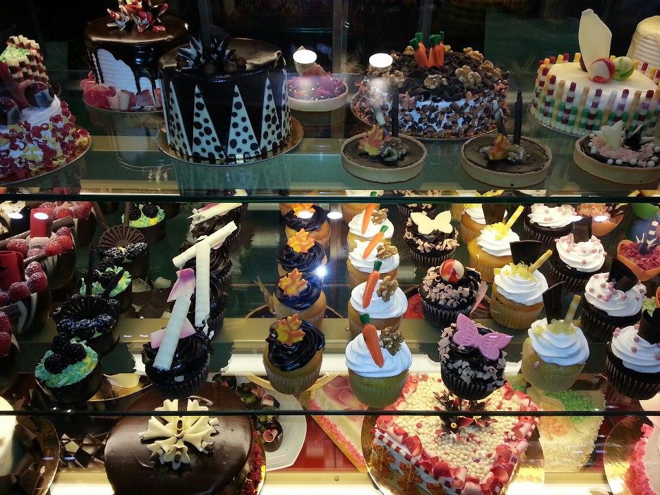 Cupcake Case.jpg