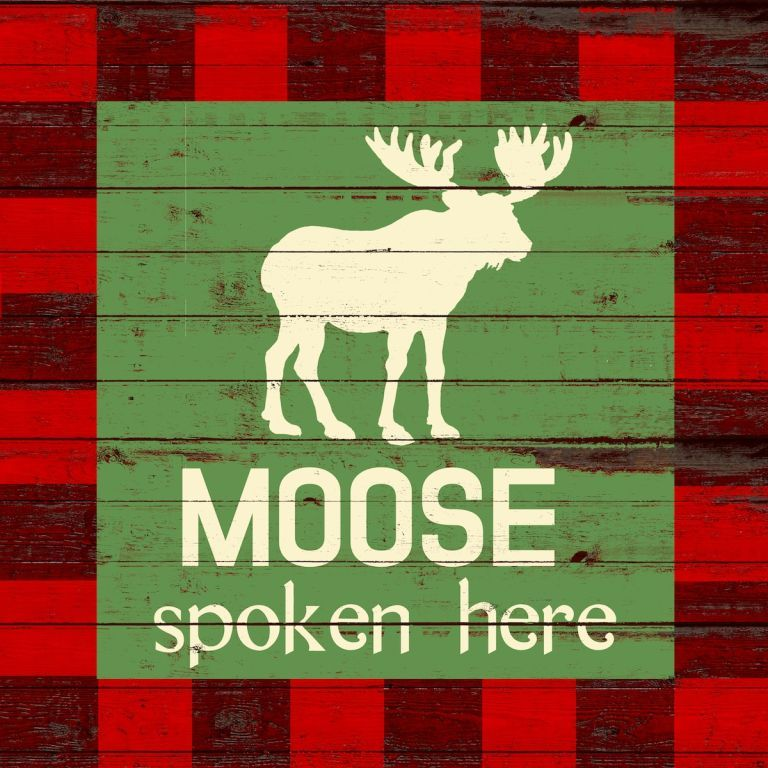 S446 moose spoken here LR
