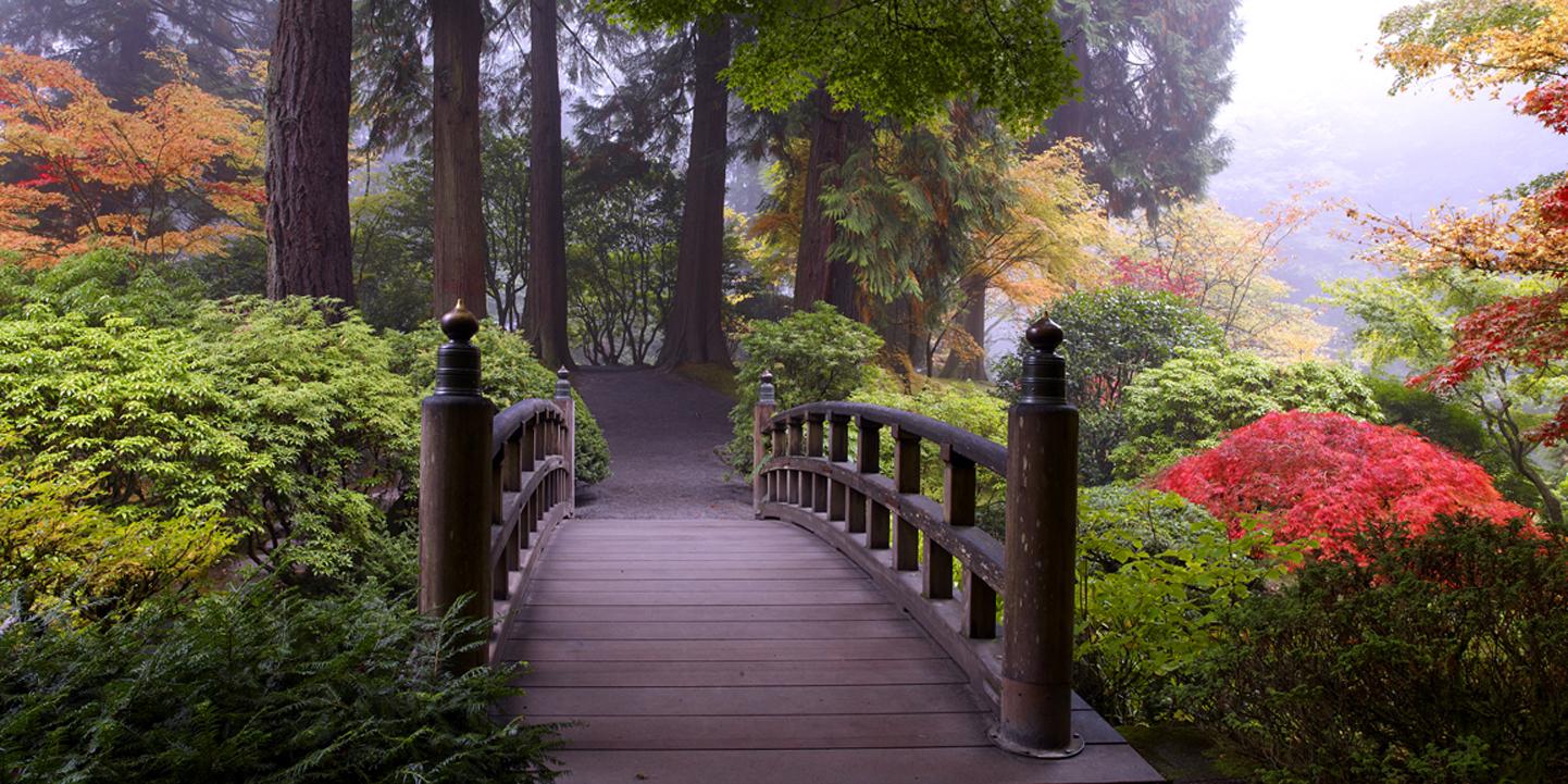 bridge of peace.jpg