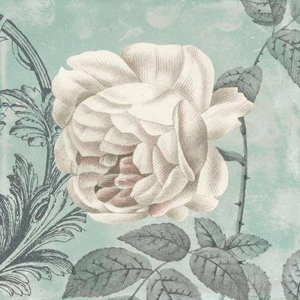 Rose II.jpg
