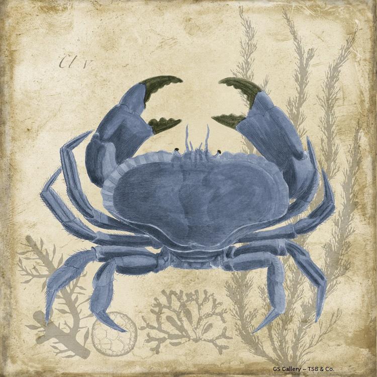 G11521 Crab (blue).jpg