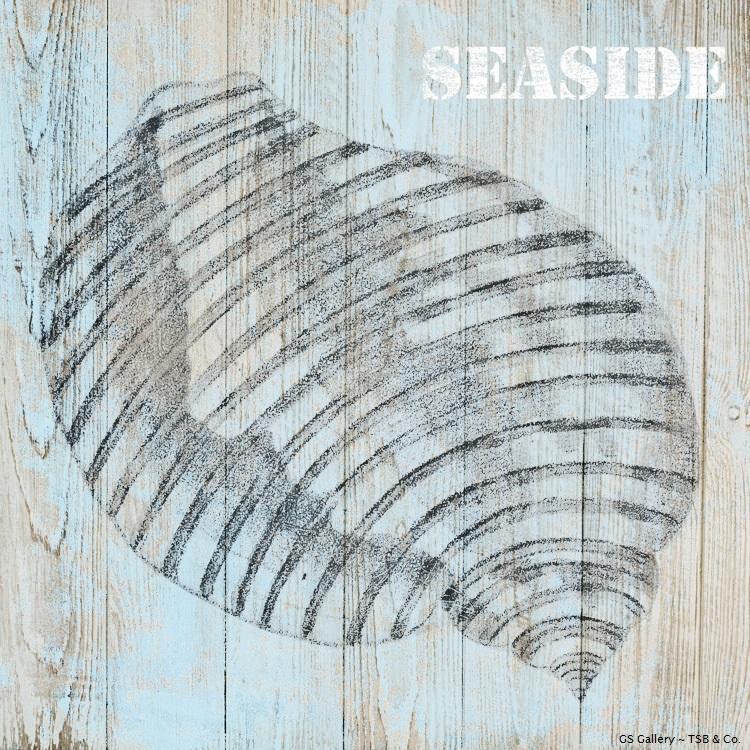 G11507 Seaside.jpg