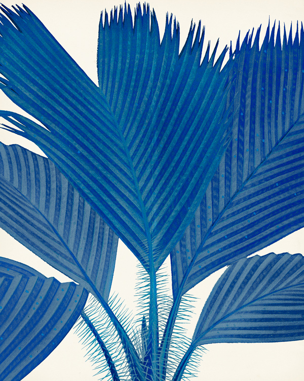 G12260-SA Palm in Blue NOT FOR WALL DECOR tif.jpg