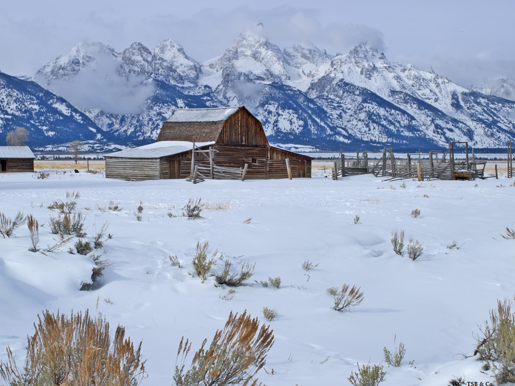 WC TSB teton winter .jpg