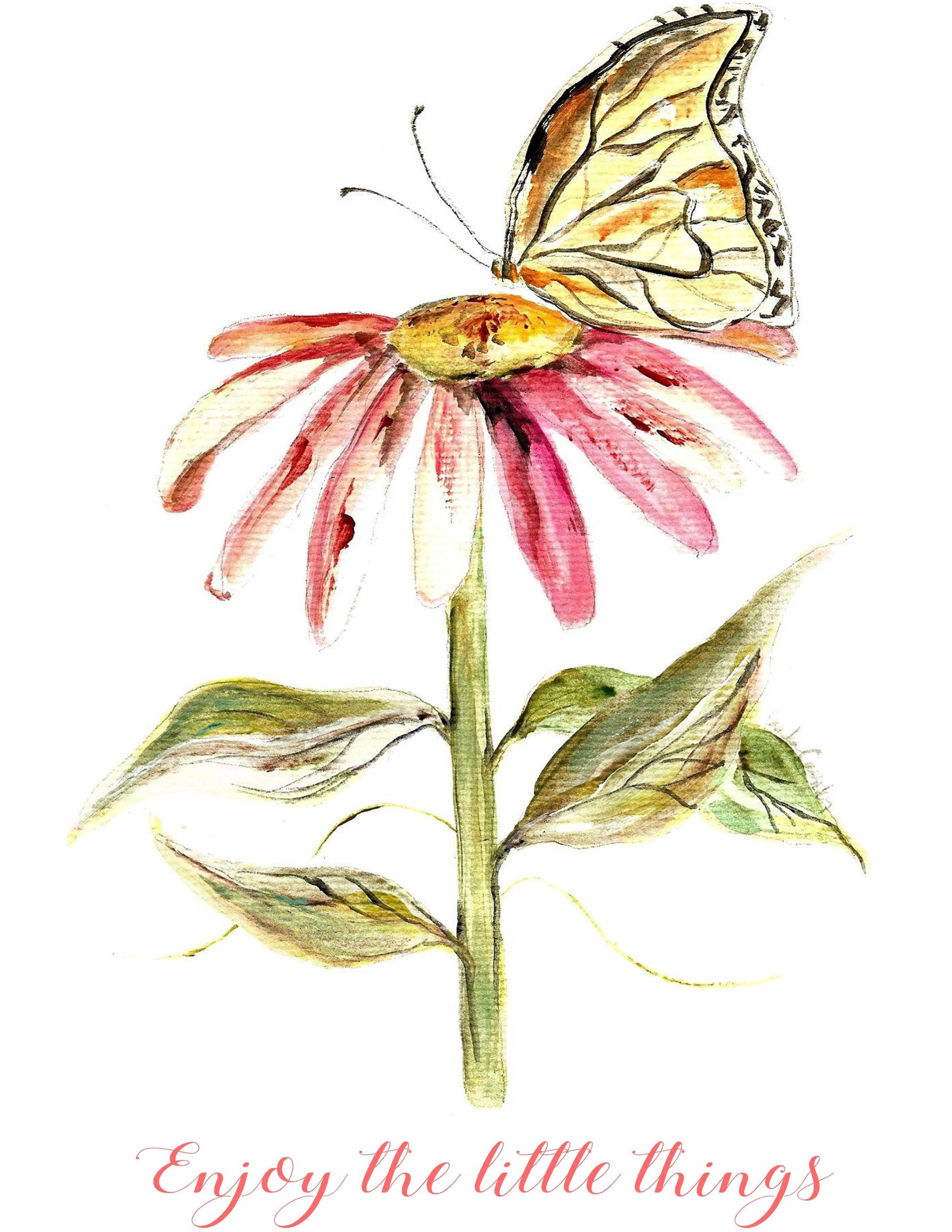 PCD TSB 20601 Butterfly.jpg