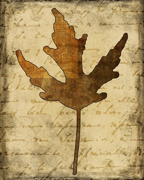 Fall Leaves 2.jpg