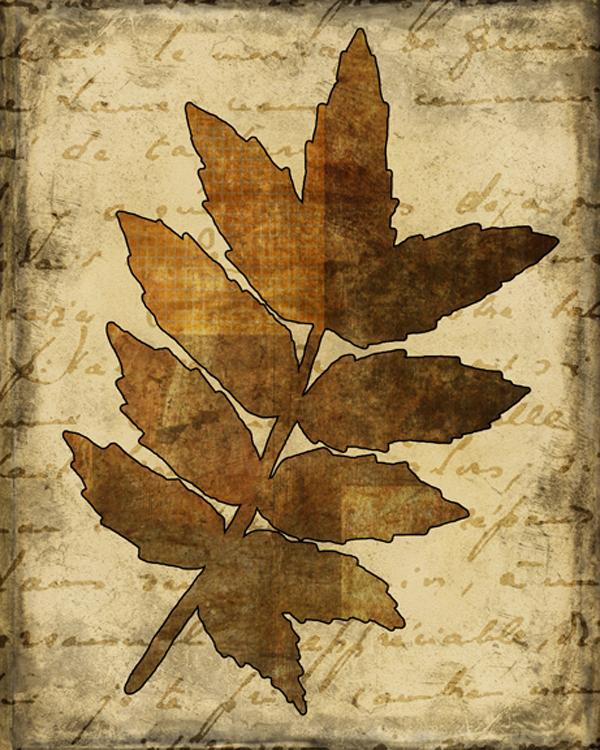 Fall Leaves 3.jpg