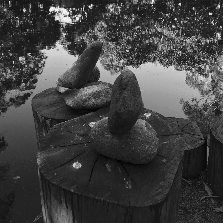 Pond-UOW