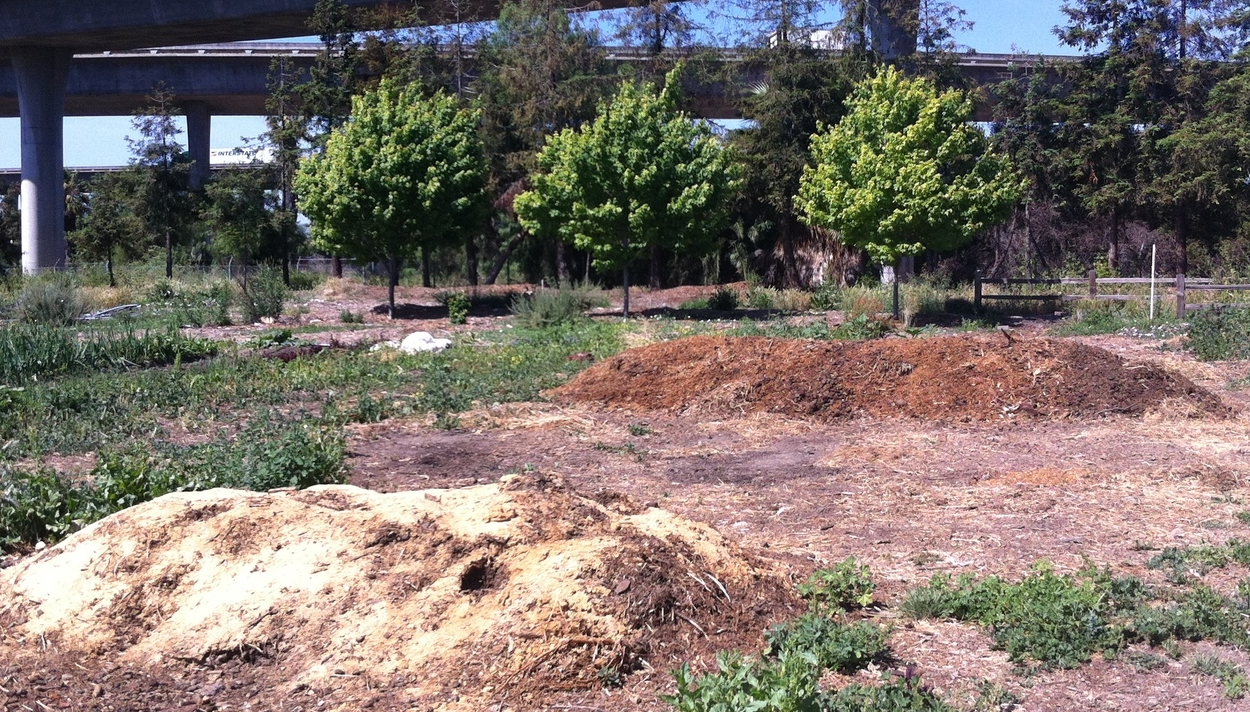 "Our compost system is working great, with several ""windrow"" piles in the pipeline at any given time."