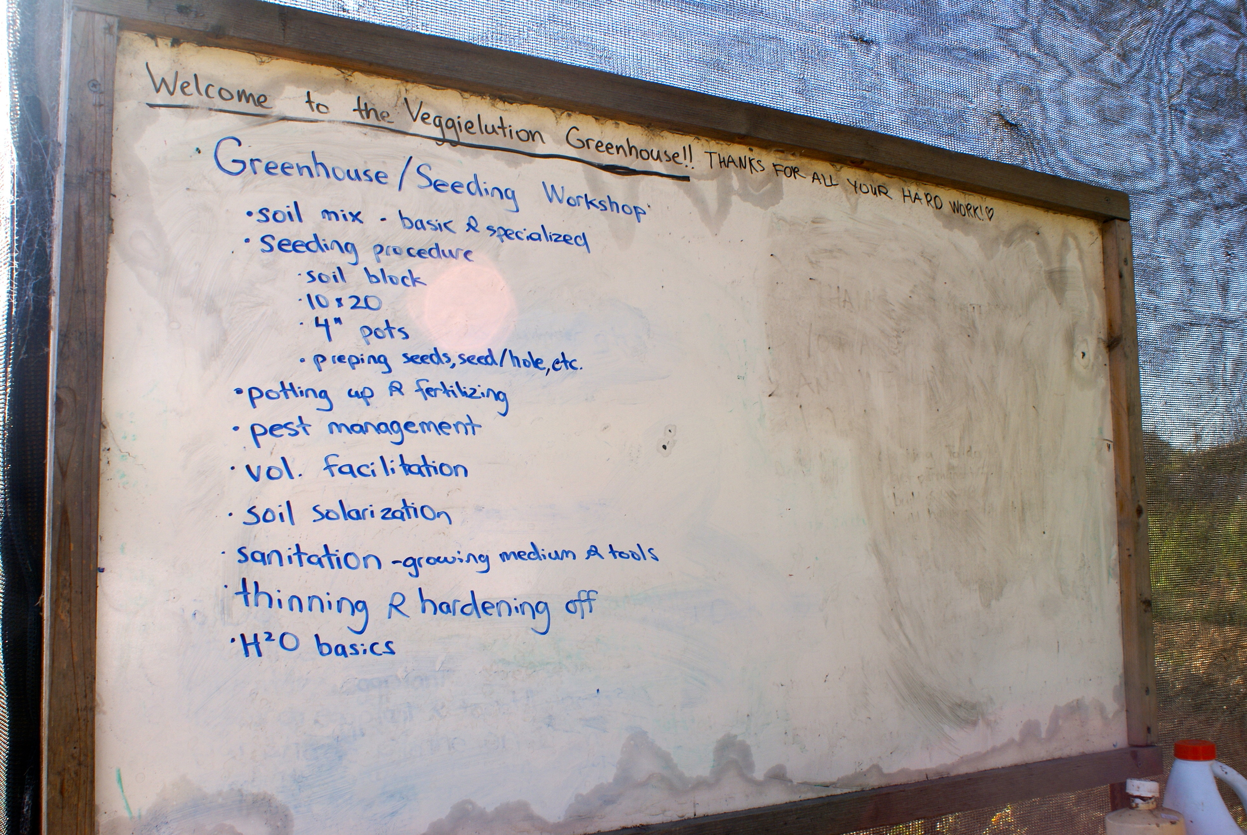 Turning to the whiteboard to explain the processes of the greenhouse.