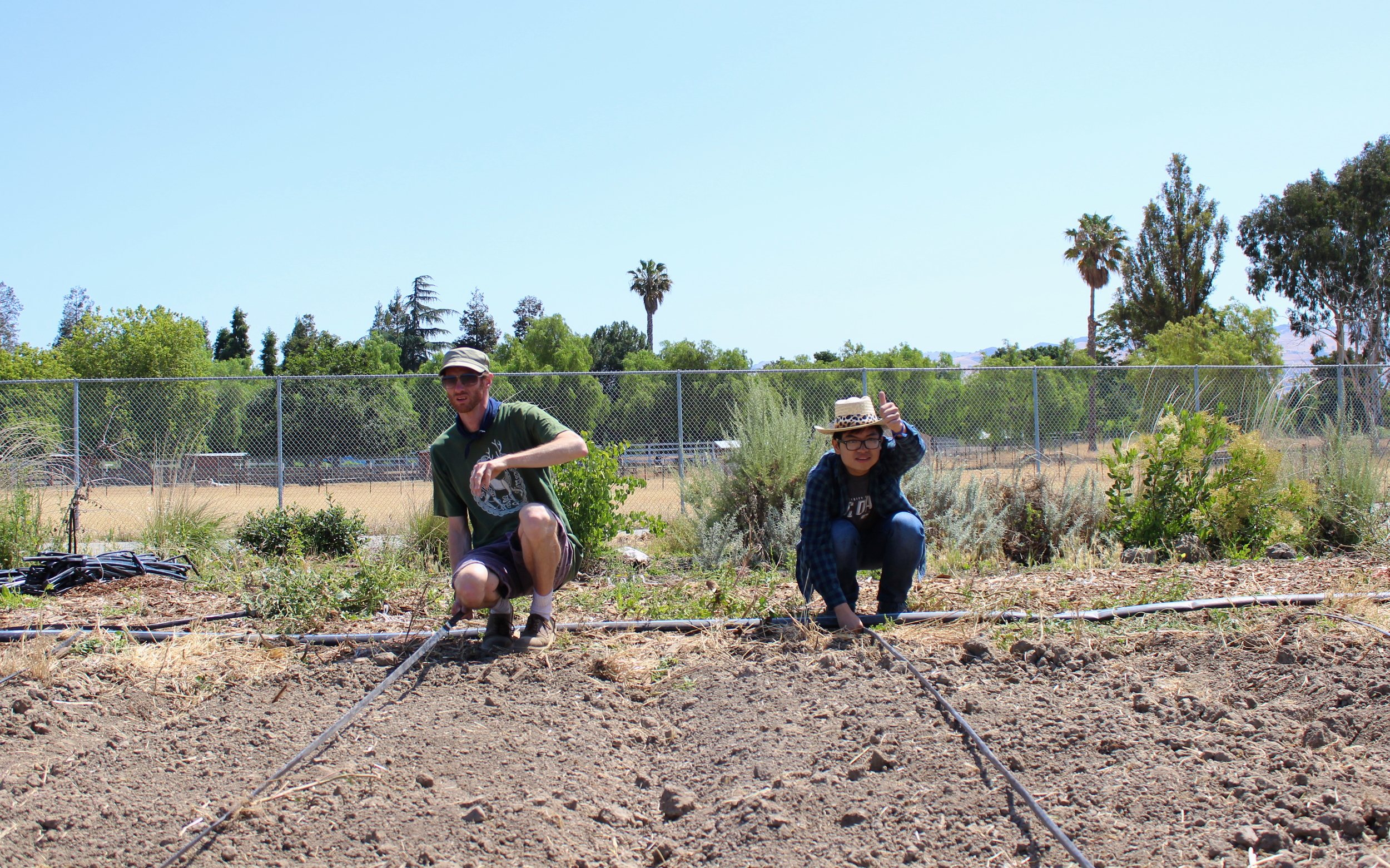 Darin and Thien help set up two new irrigation lines.