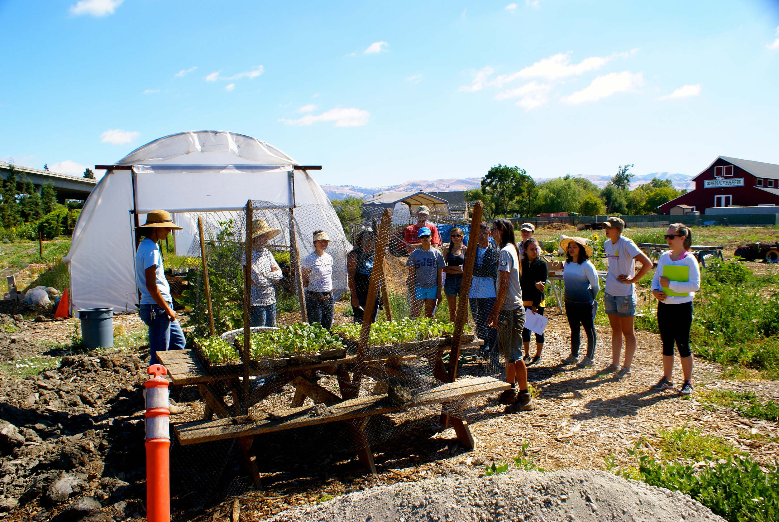 HealthCorps member, Mika, talks to the interns about hardening off seedlings.