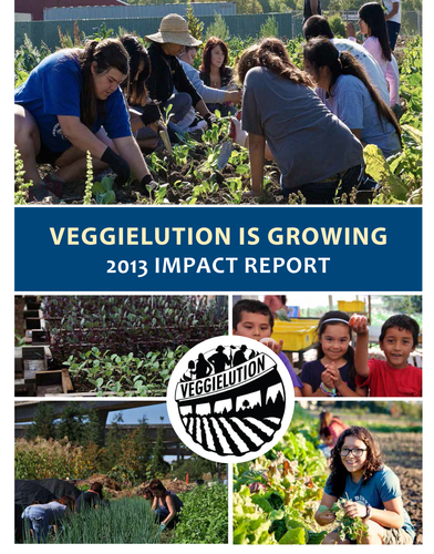 Read our 2013 Report