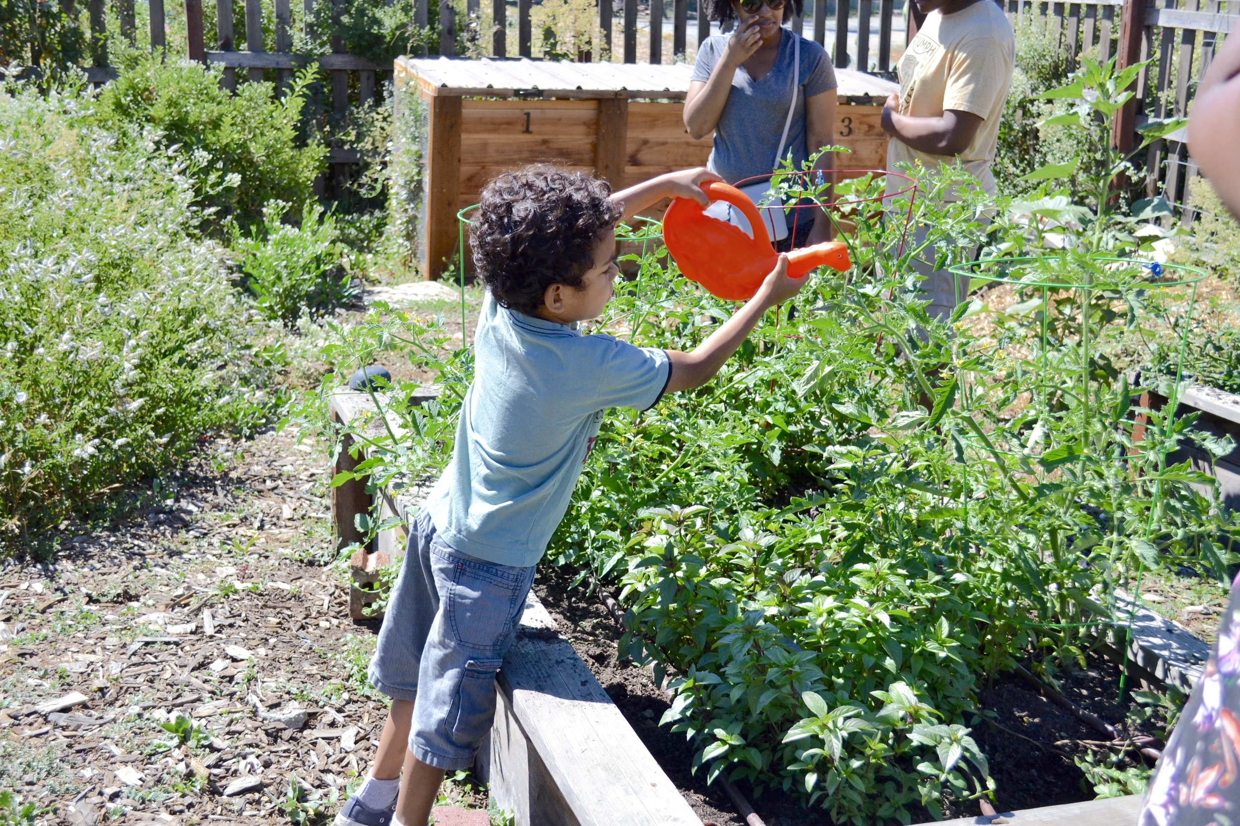 Youth Garden - 10 A.M - 12:30 P.M