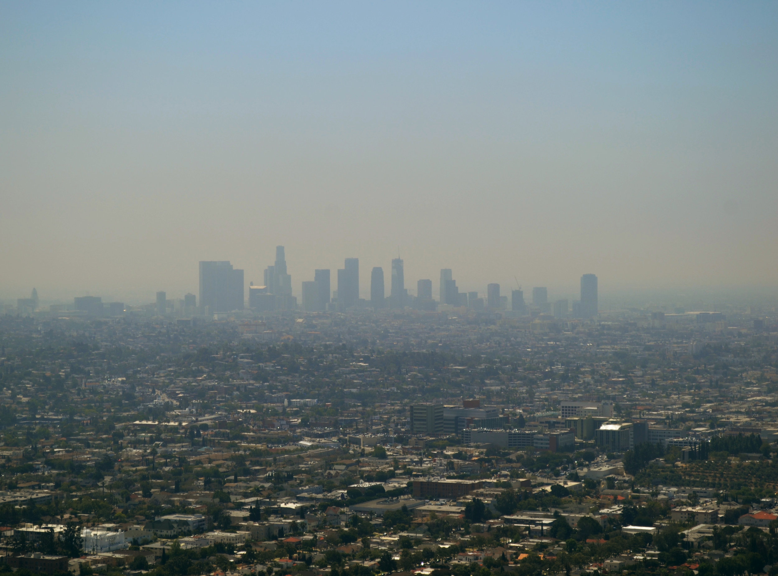 Los Angeles. Nikon D3100.