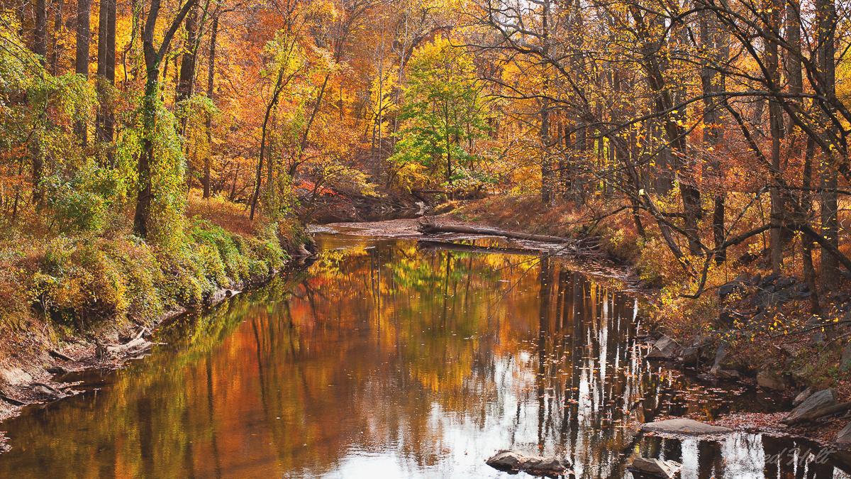 rock creek 1