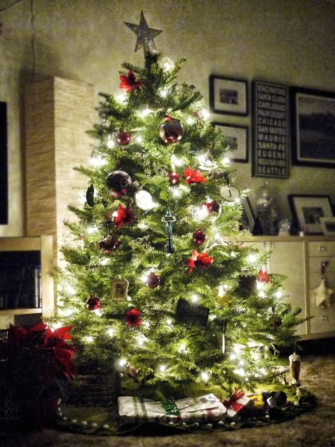 2014 Christmas Tree.jpg