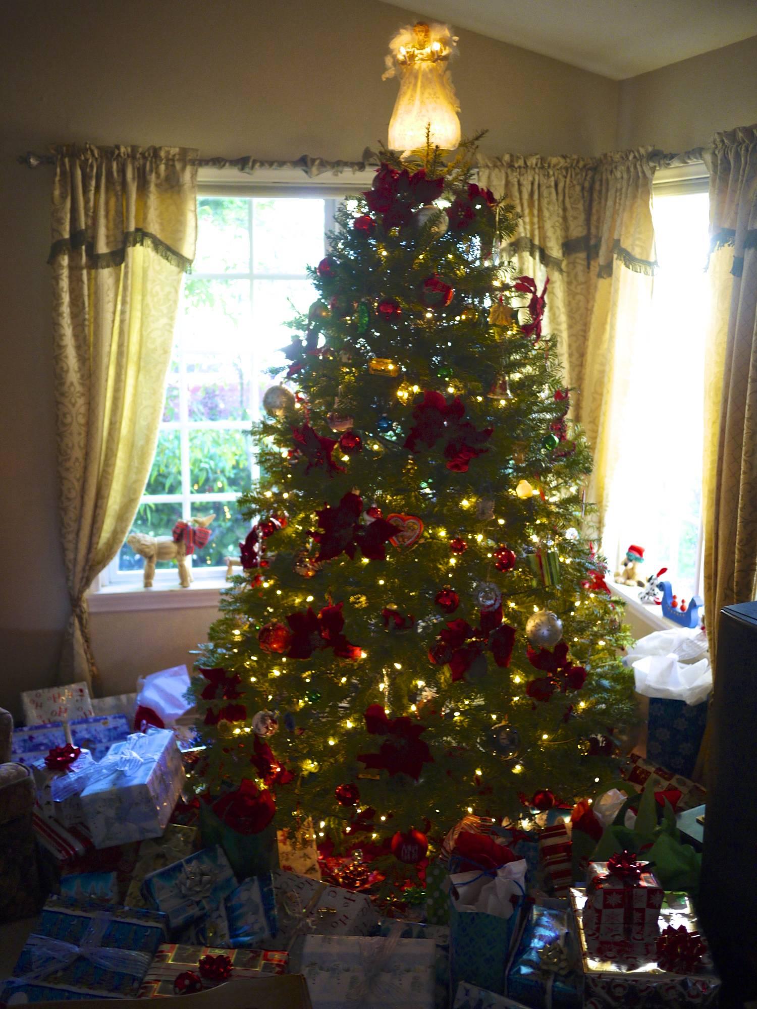 Parent's Christmas Tree.jpg