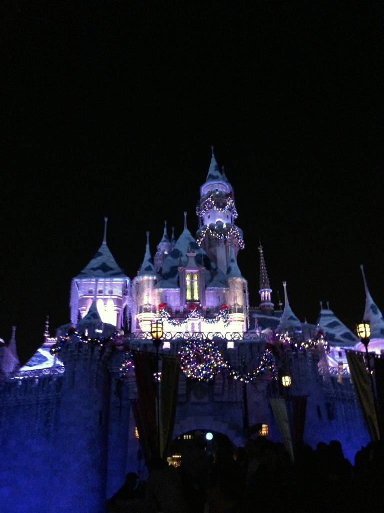 Disneyland at Night.jpg